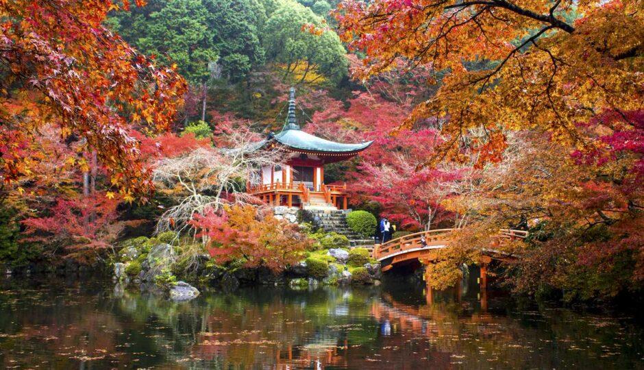 Viaggio in Giappone: quando cadono le foglie la magia avvolge Kyoto