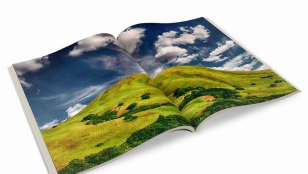 Stampa digitale: una breve panoramica